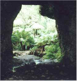 Tunnel 2 portal, Wolgan Valley Railway, Blue Mountains